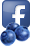 Scott Blueberries Facebook
